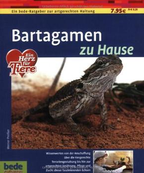 Bartagamen zu Hause - Werner Preißer [Broschiert]