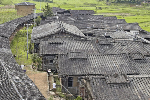 Chinese Vernacular. The Weiwu at Dafuzhen - Yuyu Chang  [Gebundene Ausgabe]