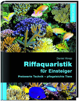 Riffaquaristik für Einsteiger: Preiswerte Technik - pflegeleichte Tiere - Daniel Knop