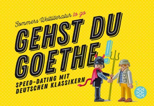 Gehst du Goethe!. Speed-Dating mit deutschen Klassikern - Michael Sommer  [Gebundene Ausgabe]