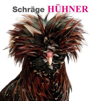 Schräge Hühner: Ein unterhaltsamer Bildband mit den schönsten und lustigsten Bildern der gefiederten Tiere, mit süßen Küken und eindrucksvollen Hähnen - White Star Verlag