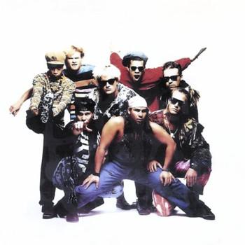 Stonefunkers - Harder than kryptonite (1990)