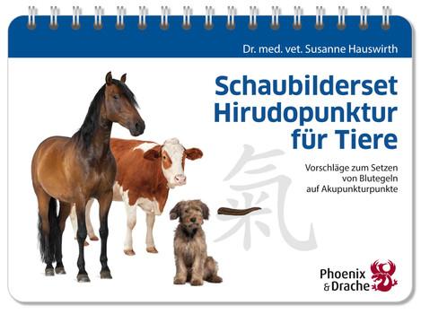 Schaubilderset Hirudopunktur für Tiere: Vorschläge zum Setzen von Blutegeln auf Akupunkturpunkte - Dr. med. vet. Hauswirth, Susanne