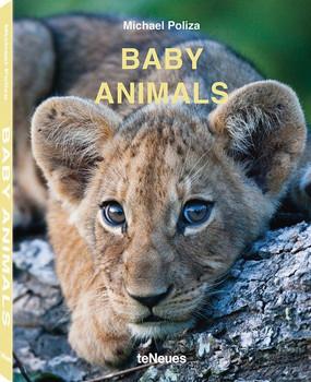 Baby Animals - Michael Poliza  [Gebundene Ausgabe]