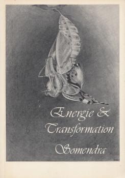 Energie & Transformation - Swami Anand Somendra [Taschenbuch]