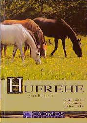 Hufrehe - Anke Rüsbüldt