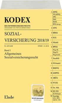 KODEX Sozialversicherung 2018/19, Band I - Elisabeth Brameshuber  [Taschenbuch]