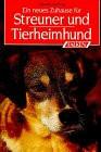 Ein neues Zuhause für Streuner und Tierheimhund. - Claudia Ludwig