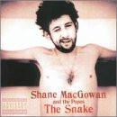 Shane Macgowan - The Snake-New Version