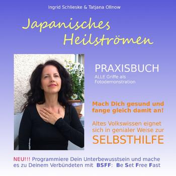 Japanisches Heilströmen PRAXISBUCH: Selbsthilfebuch - Schlieske, Ingrid