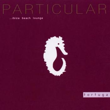 Various - Particular Ibiza Lounge 1