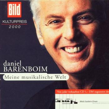 Daniel Barenboim - Meine Musikalische Welt