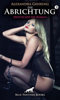 Die Abrichtung 3 | Erotischer SM-Roman. Kaum ist Sari zu Hause, nimmt sie erneut an einer harten DarkSession teil, die sie an ihre Grenzen bringt ... - Alexandra Gehring  [Taschenbuch]
